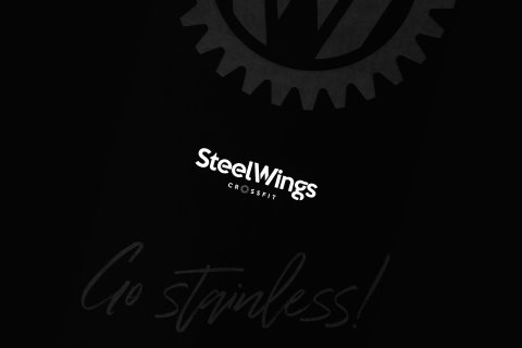 steel-wings-01